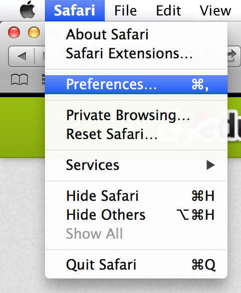 Safari settings tutorial